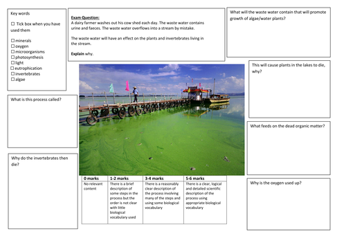 QWC Writing Frame with picture prompt - Eutrophication
