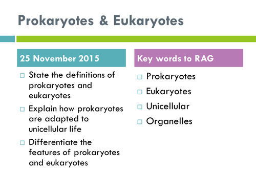 Prokaryotes and Eukaryotes by jenniferseon Teaching Resources Tes – Prokaryotic and Eukaryotic Cells Worksheet