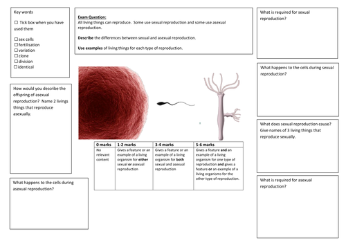 QWC Writing Frame with picture prompt - Sexual Vs Asexual Reproduction