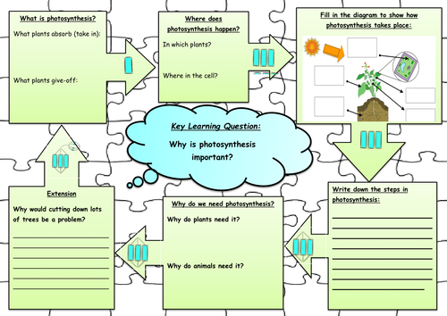 Photosynthesis Jigsaw Worksheet By Annabelbianca