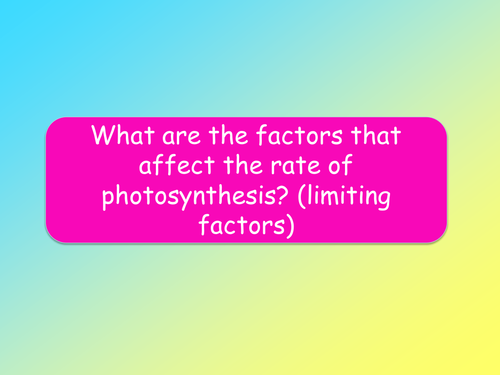 AQA B2.8 - Making the most of photosynthesis lesson