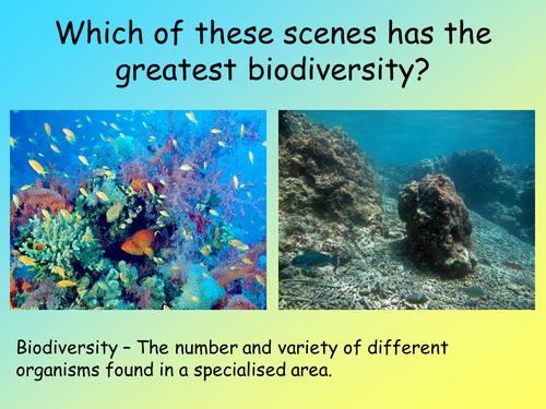 AQA B2.9 - Organisms and their environment