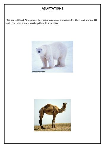Adaptations booklet