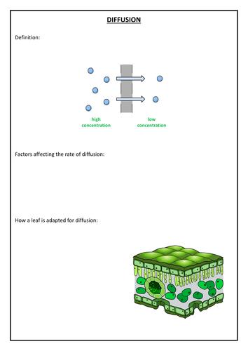 Diffusion and osmosis GCSE