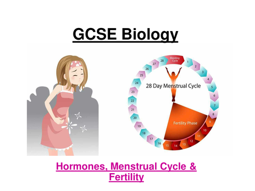GCSE AQA Biology - Menstrual cycle, hormones & fertility ppt & w/sheets