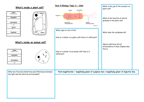 GCSE/KS3 Biology  Revision (Cells, Inheritance, Health, Plants)