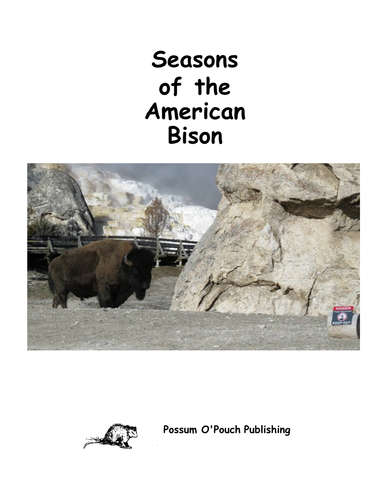 Seasons of the American Bison