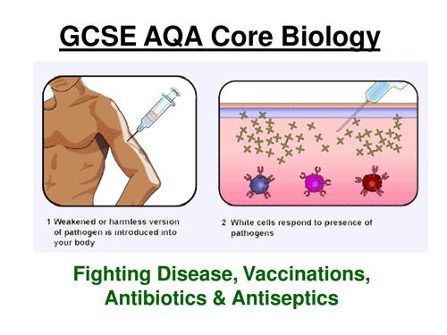 GCSE AQA Core Biology - Pathogens, Fighting Diseases & Antibiotics ppt (17 slides) + w/sheets