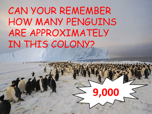The Great Penguin Problem