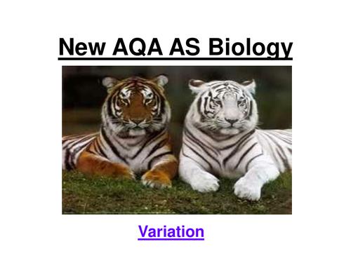 New OCR AS Biology - Variation, SD & Spearman's Rank  22 slide ppt