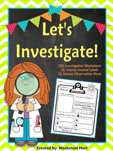 Let's Investigate! 10 Investigation Worksheets
