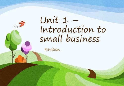 Business Studies Intensive Revision - Edexcel Unit 1