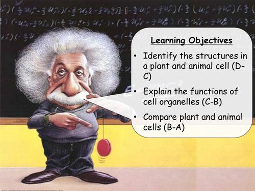 AQA Biology B2 - whole unit - 20 lessons plus resources (40 file bundle)