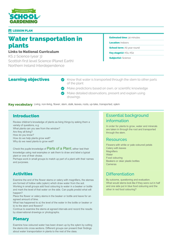 Water Transportation In Plants Lesson Plan