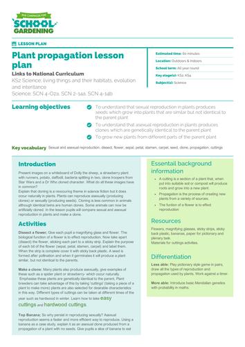 Plant Propagation Lesson Plan