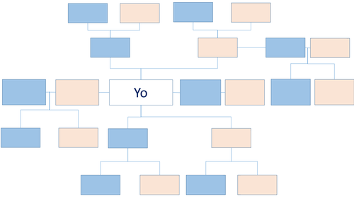 Family Tree  and Word Order