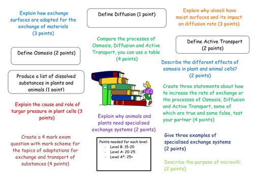 Points Machine Revision: AQA B3 Ventilation,  Diffusion Adaptations, Homeostasis & Transpiration