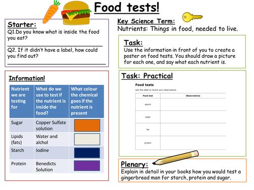 SEN  Key Stage 3: Food Tests
