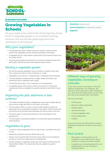 Growing Vegetables in Schools