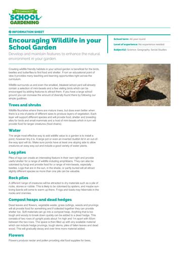 Encouraging Wildlife in your School Garden