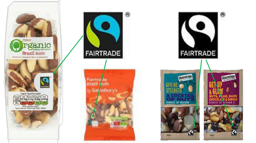 Fairtrade Brazil Nut Ecology presentation