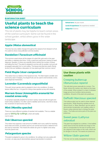 Useful Plants to teach the Science Curriculum