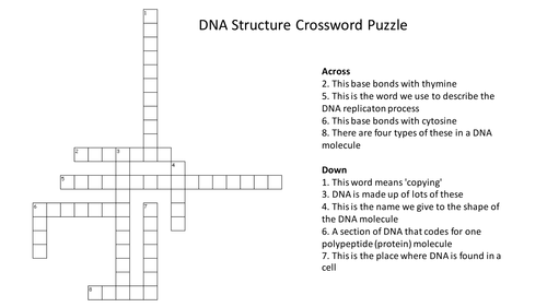 DNA Structure Crossword Puzzle With Answers by – Dna Review Worksheet Answer Key