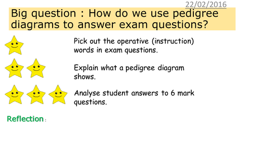 Edexcel GCSE RevisionExam Practice Question on Pedigree Charts – Pedigree Charts Worksheet