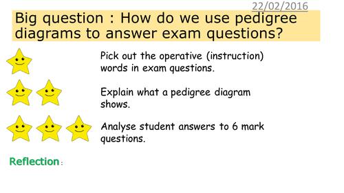 Edexcel Gcse Revision Exam Practice Question On Pedigree