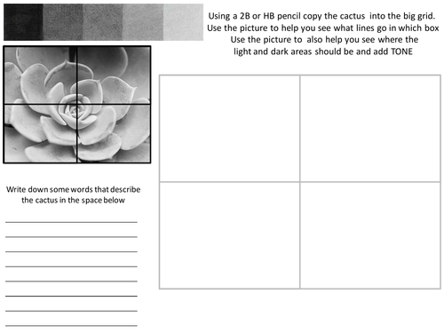 Tonal Succulent Worksheet with Evaluation