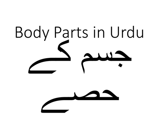 Body Parts and Illnesses in Urdu