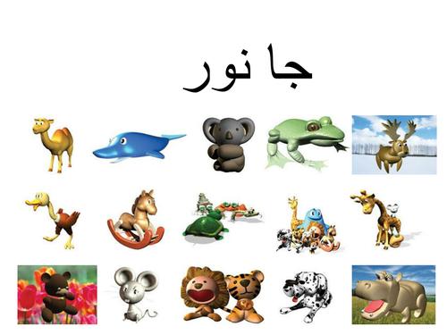 Animals in Urdu