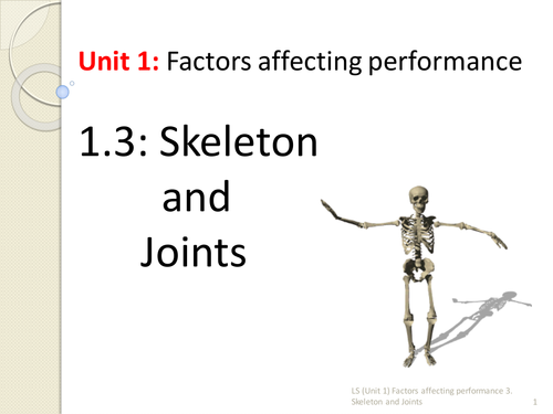 IGCSE PE 1.3 Skeleton and Joints