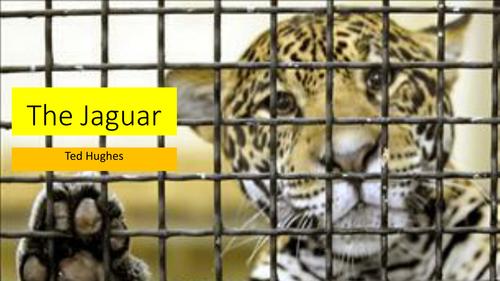 Ted Hughes: The Jaguar