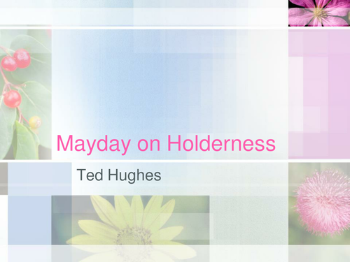 Ted Hughes: Mayday on Holderness