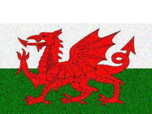 Owen Sheers: Flag