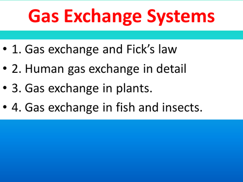 Gas Exchange in humans, fish, insects and plants plus the role of haemoglobin: PPT and booklet