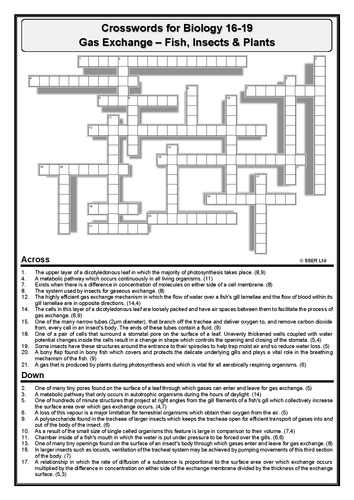 Crossword – Gas Exchange in Fish, Insects & Plants (Answers Provided)