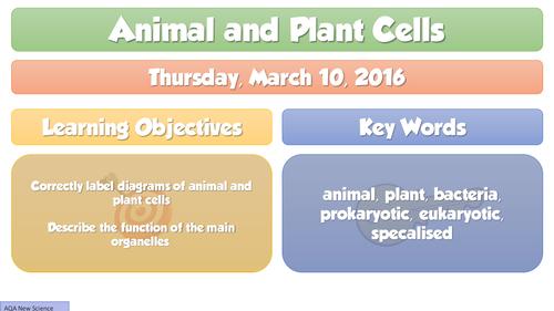 2016 NEW B1 Cells - Animal Plant Bacterium, AQA NEW GCSE Biology FULL Lesson
