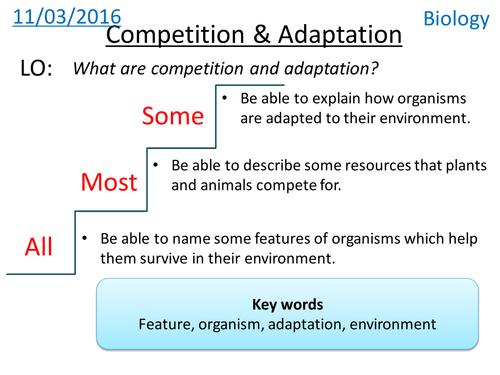 Competition & Adaptation - NEW KS3