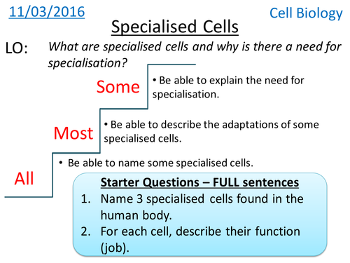 Miss radfords science emporium teaching resources tes specialised cells cell biology new gcse publicscrutiny Images