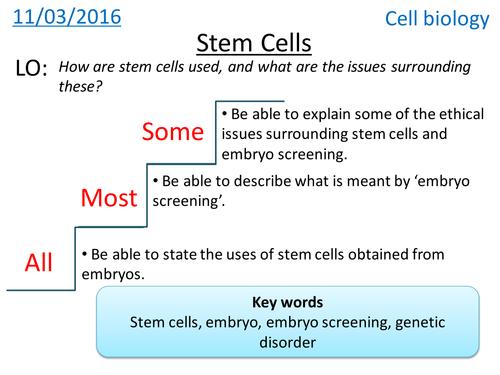 Stem cells Cell Biology NEW GCSE by hannahradford Teaching – Stem Cell Worksheet