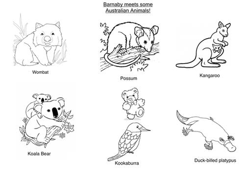 Barnaby Bear meets animals from Australia by loretolady