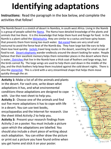 Identifying Adaptations - Research project, with writing frame