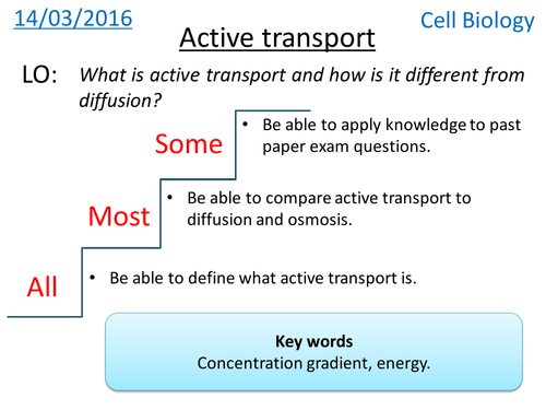 Diffusionosmosisactive Transport Venn Puzzle By Biogas66