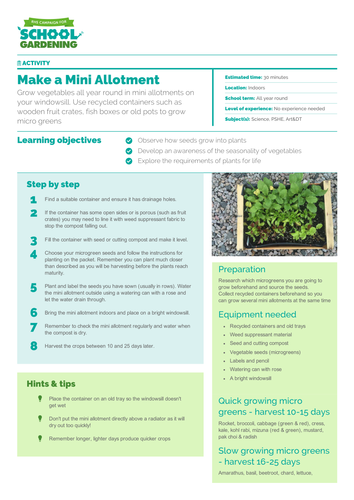 Make a Mini Allotment