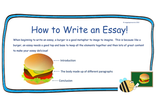 Assignment writing – Essay and Report