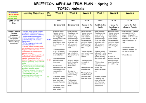 Medium Term Plan on Animals Early Years Foundation Stage