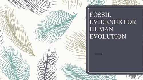 Evidence for Human Evolution  UNIT 3 BIOLOGY EDEXCEL GCSE HUMAN EVOLUTION