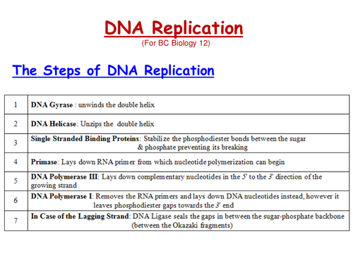 DNA Replication & Recombinant DNA by Alaadin - Teaching Resources ...
